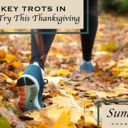Turkey Trots in Greenville