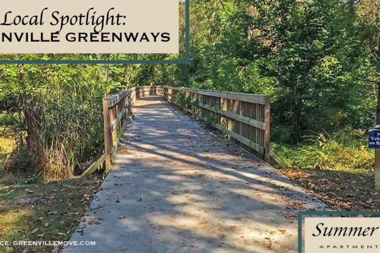 Local Spotlight: Greenville Greenways