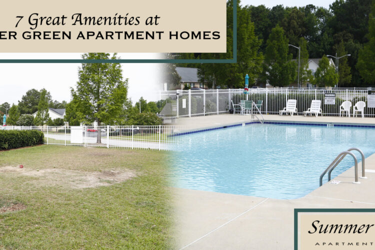 7 Great Amenities at Summer Green Apartment Homes