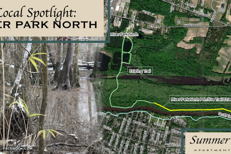 Local Spotlight: River Park North