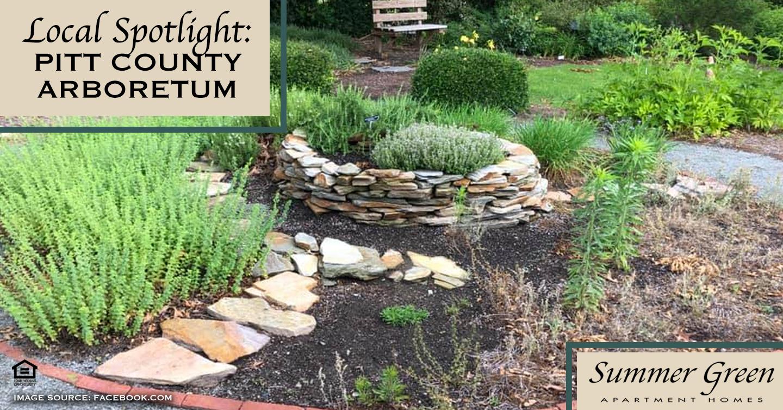 Local Spotlight: Pitt County Arboretum